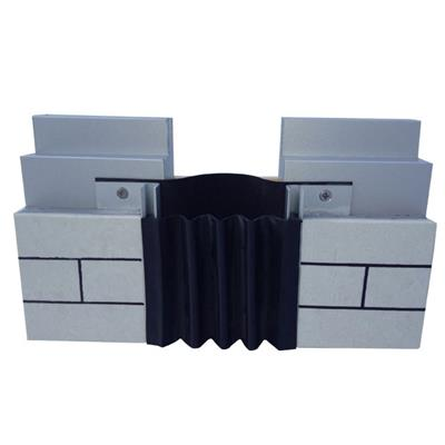 Flush Rubber Wall Expansion Joint Cover W W W C