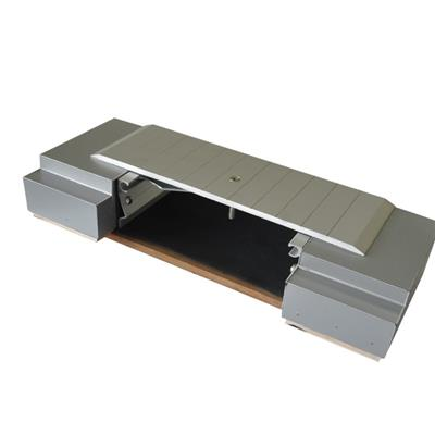 Aluminum Floor Expansion Joint Cover 2